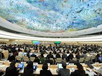 فرق الأمم المتحدة... النظامان السعودي والإماراتي مجرما حرب