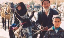 لماذا بارك بن سلمان معسكرات اضطهاد الايغور؟