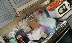 صور هجوم (امن)الدولة صباح اليوم على منزل بالعوامية