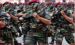 موقع ماليزي: لماذا ندعم السعودية في حرب لا ناقة لنا فيها ولا جمل؟