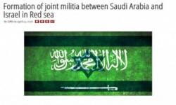 موقع أمريكي: اتفاق مشترك بين تل أبيب والرياض لإدارة البحر الأحمر.. ونشر أسماء ضباط سعوديين تدربوا بإسرائيل
