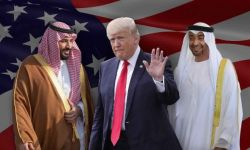 باحثة: الرياض زعزعت الأمن في المنطقة وعلقت بين واشنطن وأبو ظبي