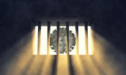"""""""قبل الكارثة"""".. حملة لإطلاق سراح معتقلي الرأي في سجون آل سعود"""