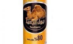 """طلاء مستخرج من زبدة """"بول البعير"""" لمواجهة صواريخ الحوثيين"""
