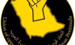 عبد الله السالم: نظام الحكم في المملكة غير قابل للإصلاح وسيزول