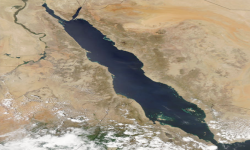 التحركات السعودية ومحاولات السيطرة على البحر الأحمر