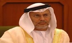 وزير الخارجية الإماراتية: نسعى والرياض لتغيير سياسة قطر
